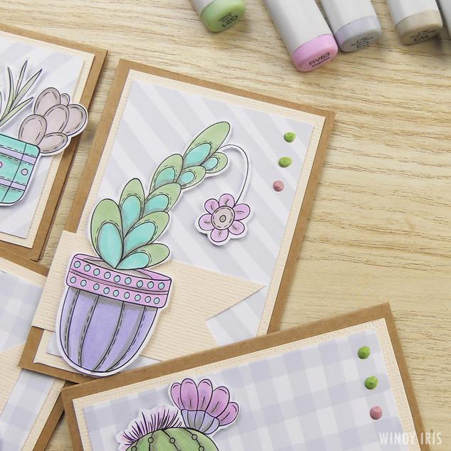 Succulents Cards