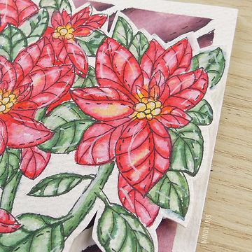 Poinsettia Insta 3.jpg