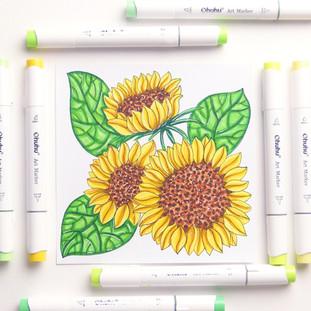 Sunflowers Marker Illustration