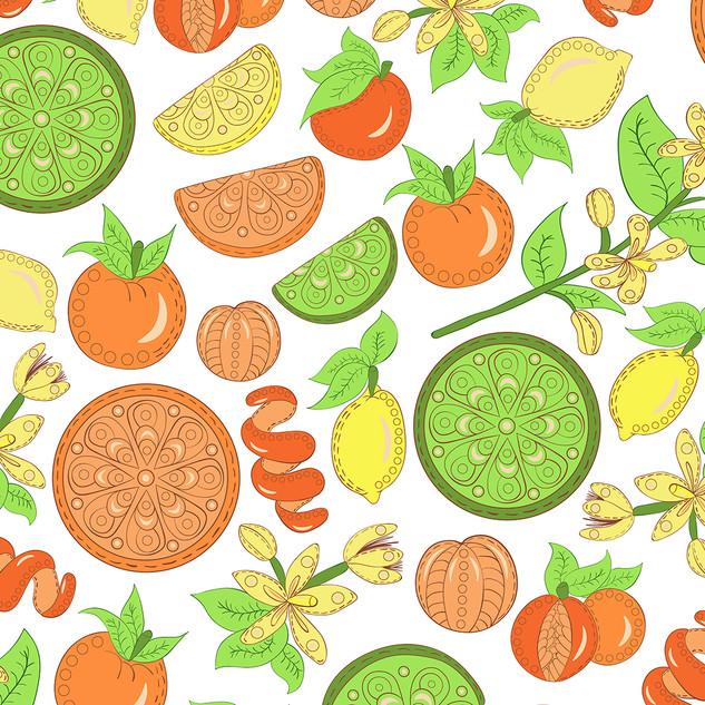 Citrus Garden Pattern