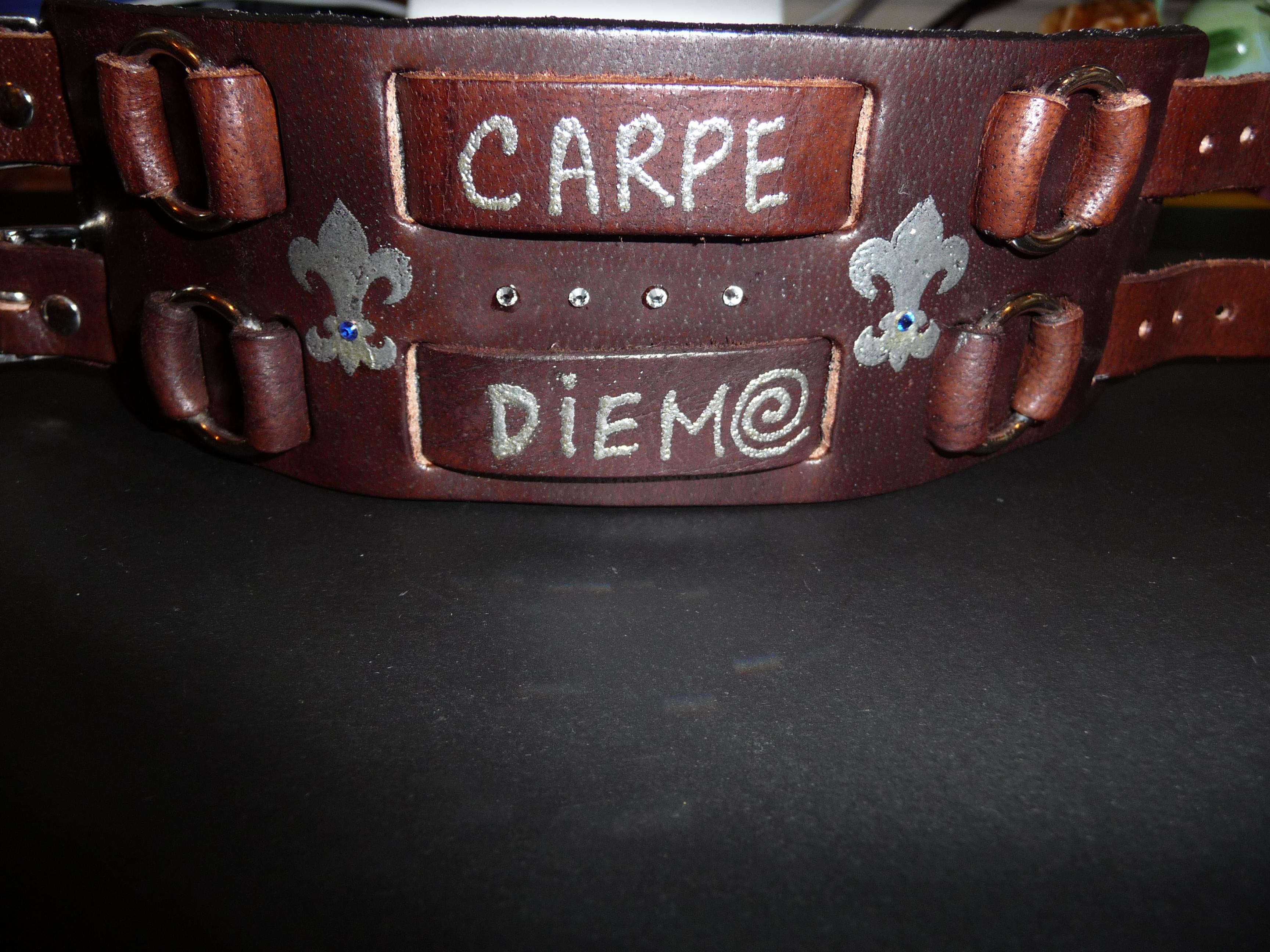 Carpe Diem cuff