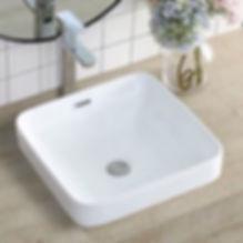 Toilet Basin