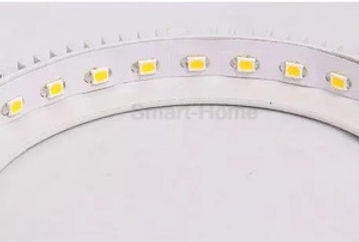 Eureka LED Downlight