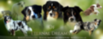 Of Eternal Dream's FB cover 3.png
