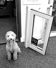 Sky sales assistant, showroom dog, sales for windows, doors, conservatories & extensions sales person of windows, doors & conservatories for UPVC, Aluminium and timber