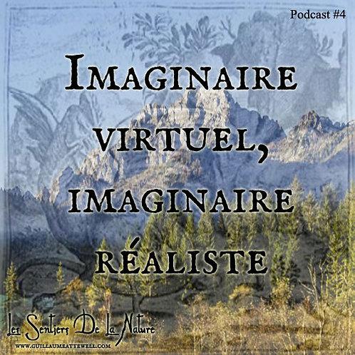 Imaginaire virtuel, imaginaire réel