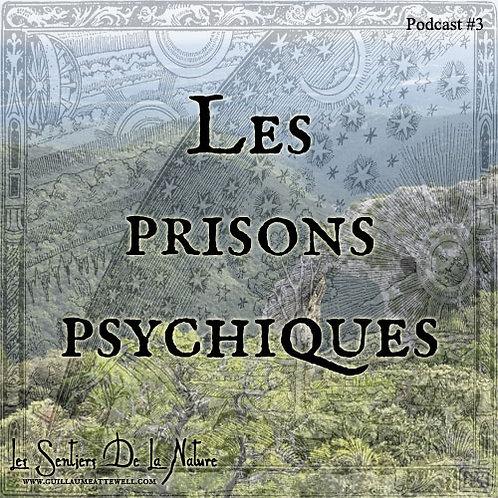 Les prisons psychiques