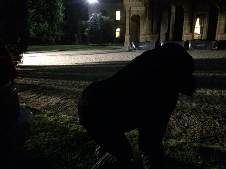 The Black Beastie