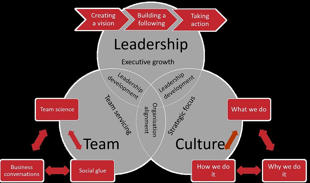 TMD business model