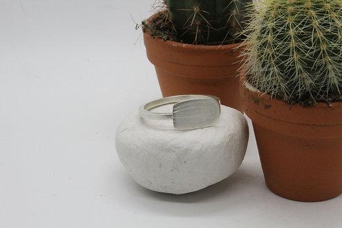 San Pedro ring