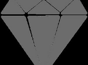 NDP Gray Logo.png