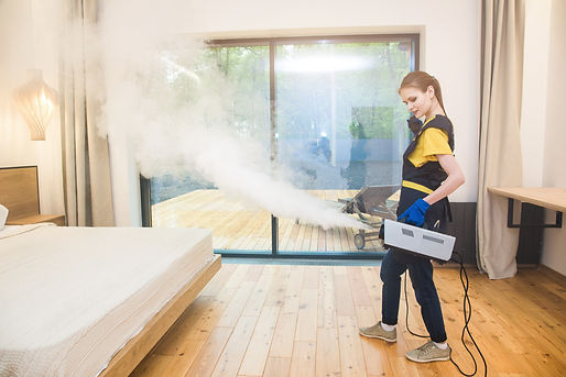 professional cleaning service. woman in