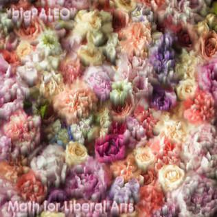 Big Paleo - Math For Liberal Arts