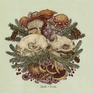 "Sloth & Turtle - ""Telemachus"" Exclusive Track Premier"