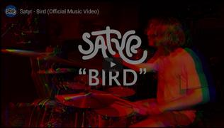 Satyr - Bird