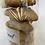 Thumbnail: Coquetes de sagí