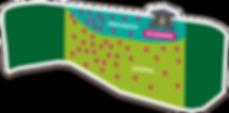 PNG WEB FNG 2019_Mapa 1200- x 593.png