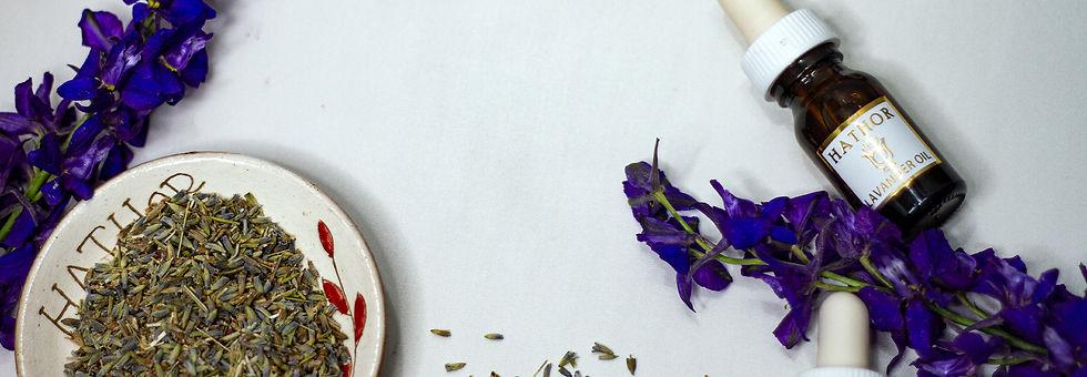 lavender strip.jpg