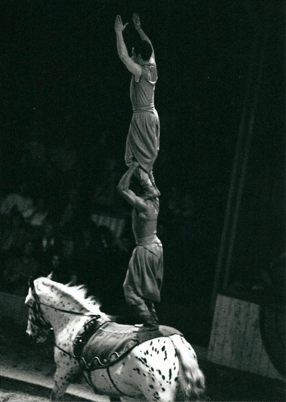 Chimère  - 1992