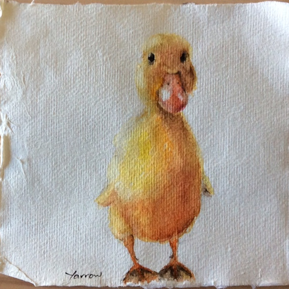 Just a duckling