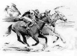 race horse study04