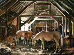 in the barn copy