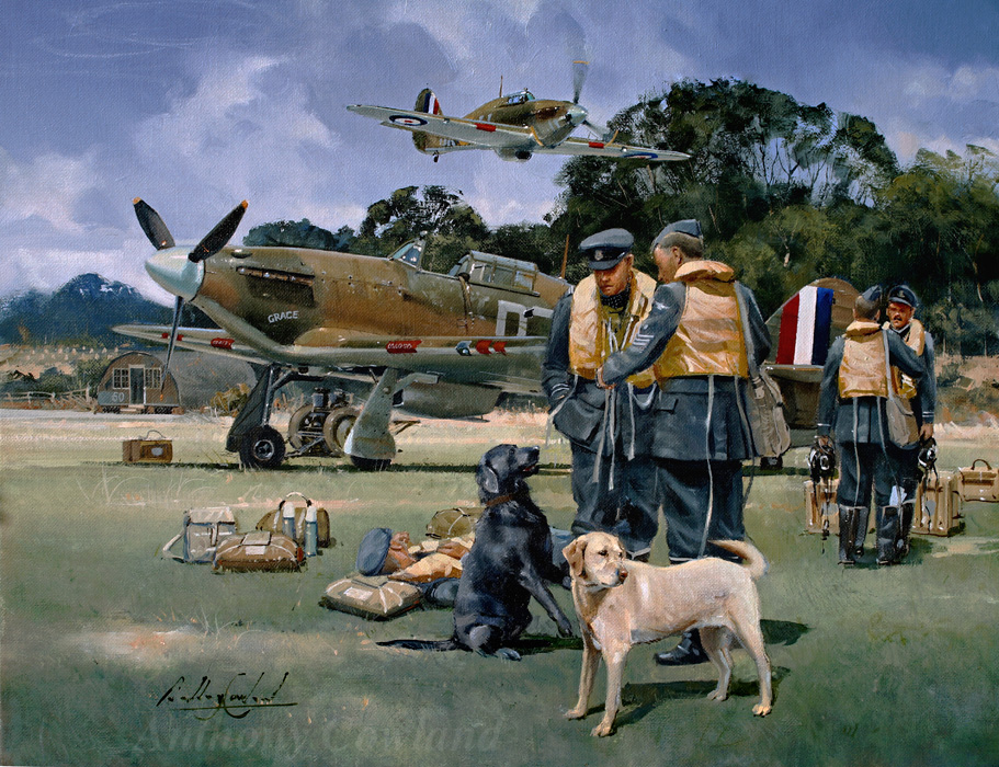 Hawker Hurricane with dogs