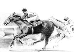 race horse study02