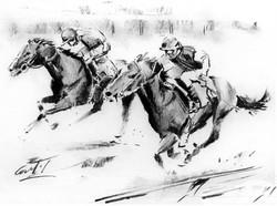 racehorse study01