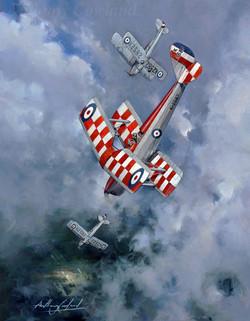 De Havilland Tiger Moths Central Flying School 1929 -30