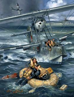 Supermarine Walrus II