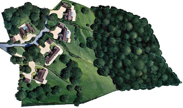 estate plan02