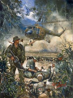 Bristol Sycamore. Malaya