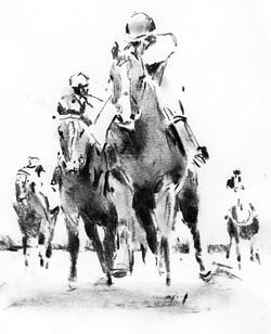 race horse study03