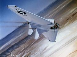 Northrop Flying wing