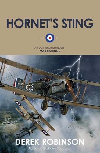 Hornet's Sting. Derek Robinson