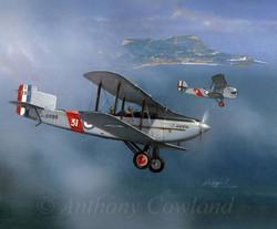Fairey III and Blackburn R