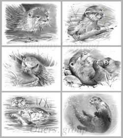otters group 2