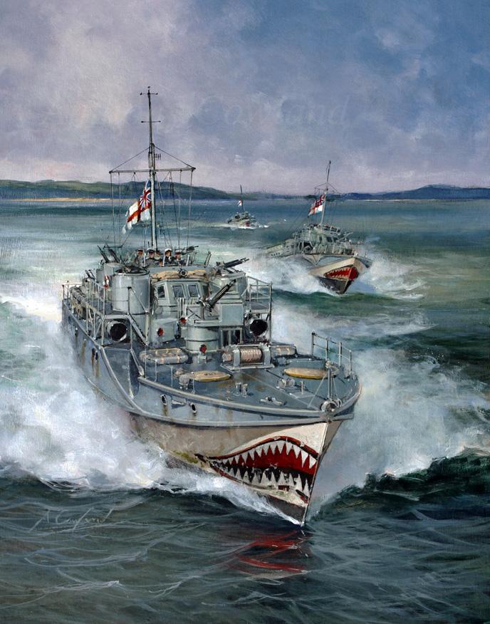 Fairmile D motor torpedo boat