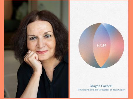 Magda Cârneci on Her New Book in English