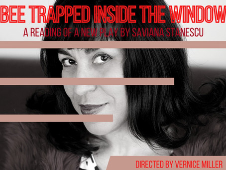 "Saviana Stănescu's ""Bee Trapped Inside the Window"" Premieres on The RCI Digital Stage"