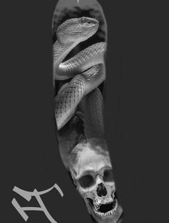 käärmejakallo.jpg