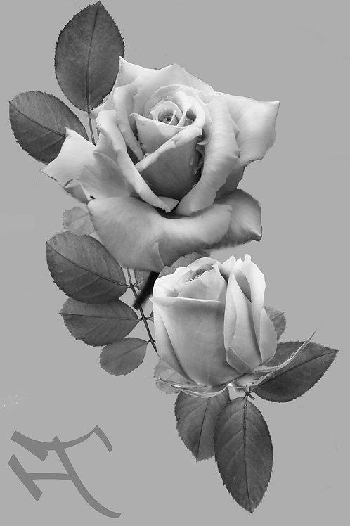 Ruusu ja nuppu 1