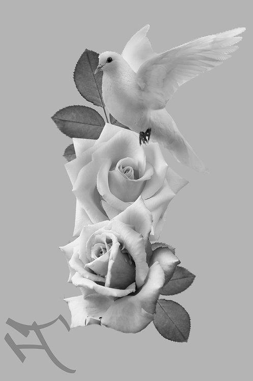 Ruusut ja kyyhky