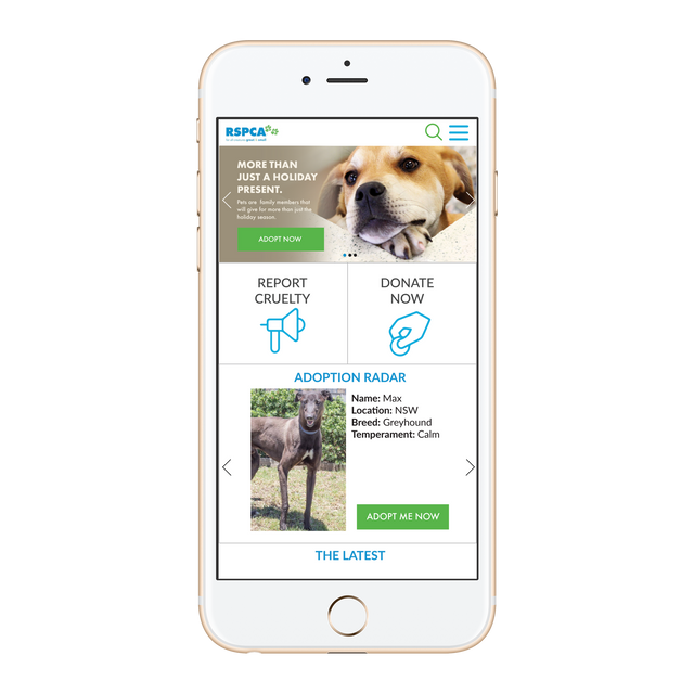 RSPCA Digital Proposal: