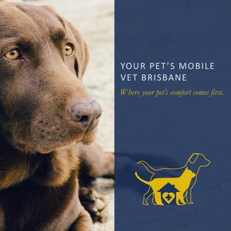 Your Pet's Mobile Vet: