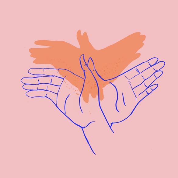Bird Hand Shadow