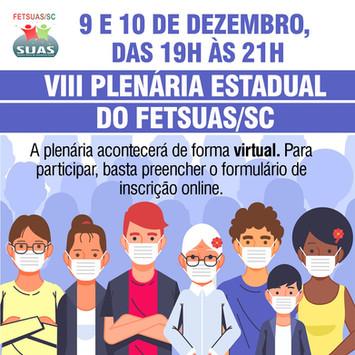 VIII PLENÁRIA FETSUAS/SC