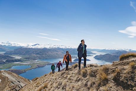 8736-Roys Peak-Wanaka-Miles-Holden.jpg