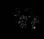 GFT Logo.png